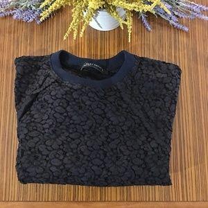 Zara Trafaluc Embroidered Lace Sheer Sweater